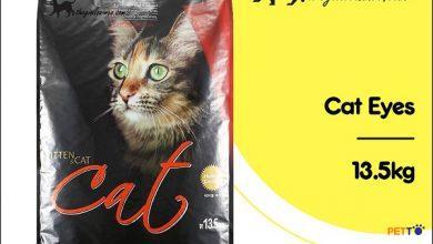 Thức ăn hạt Cat Eye cho mèo có tốt không?