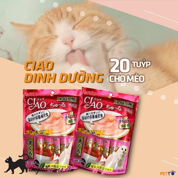 Pate Ciao là gì? Pate Ciao cho mèo loại nào tốt nhất?