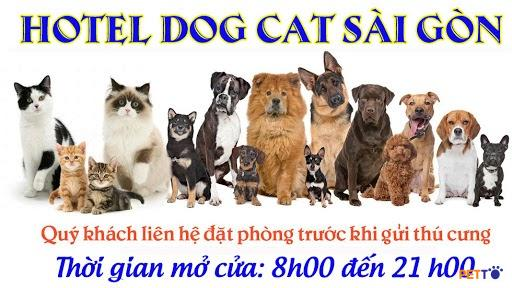 Hotel dog cat Sài Gòn được nhiều khách hàng đánh giá cao với chế độ chăm sóc khoa học, tận tình