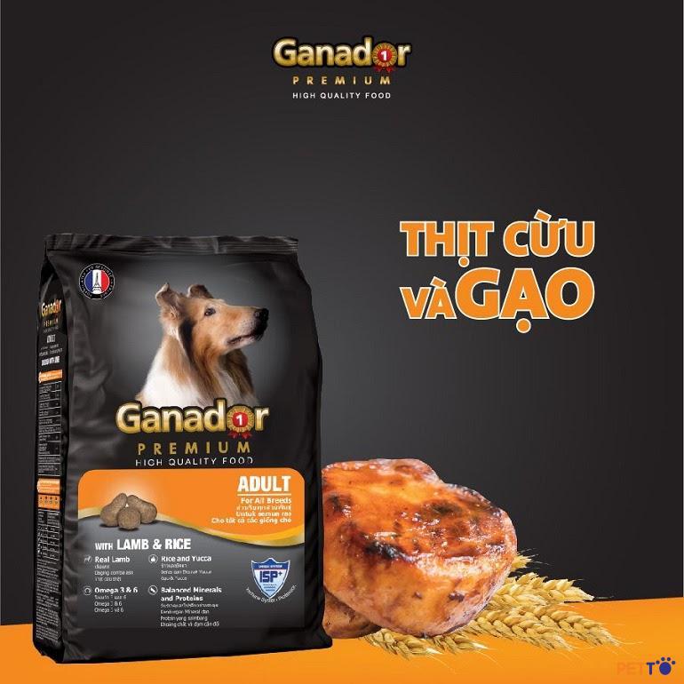 Thức ăn cho chó Ganador có tốt không? [ CHI TIẾT A-Z ]