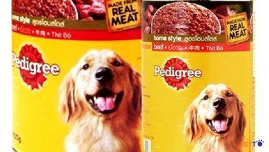 Thức ăn cho chó Pedigree có tốt không? Tất tần tật những điều bạn cần biết