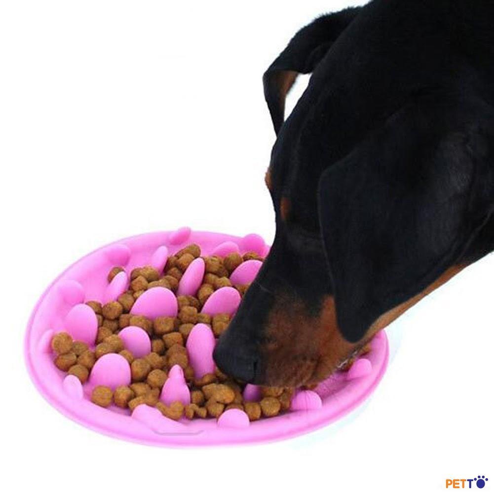 Bát thức ăn ngăn chó ăn nhanh