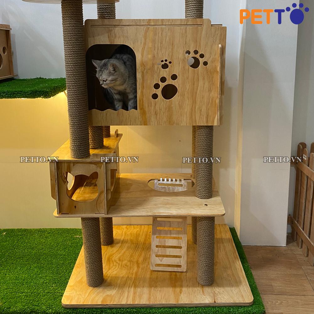 Chọn nhà cho mèo đúng cách sẽ giúp mèo nhà bạn ngoan ngoãn hơn