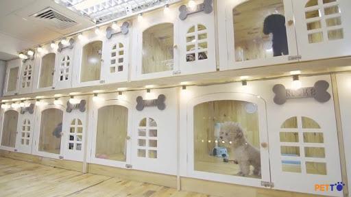 Khách sạn Phương nam được thiết kế thoáng mát, sạch sẽ, sàn nhựa, có cửa sổ đón gió, ánh sáng tốt