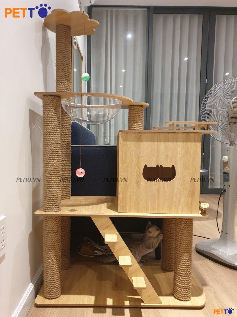 Đây là ngôi nhà mơ ước của các chú mèo