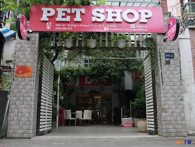 Sắm ngay nhà cho mèo tại Dogily Petshop.