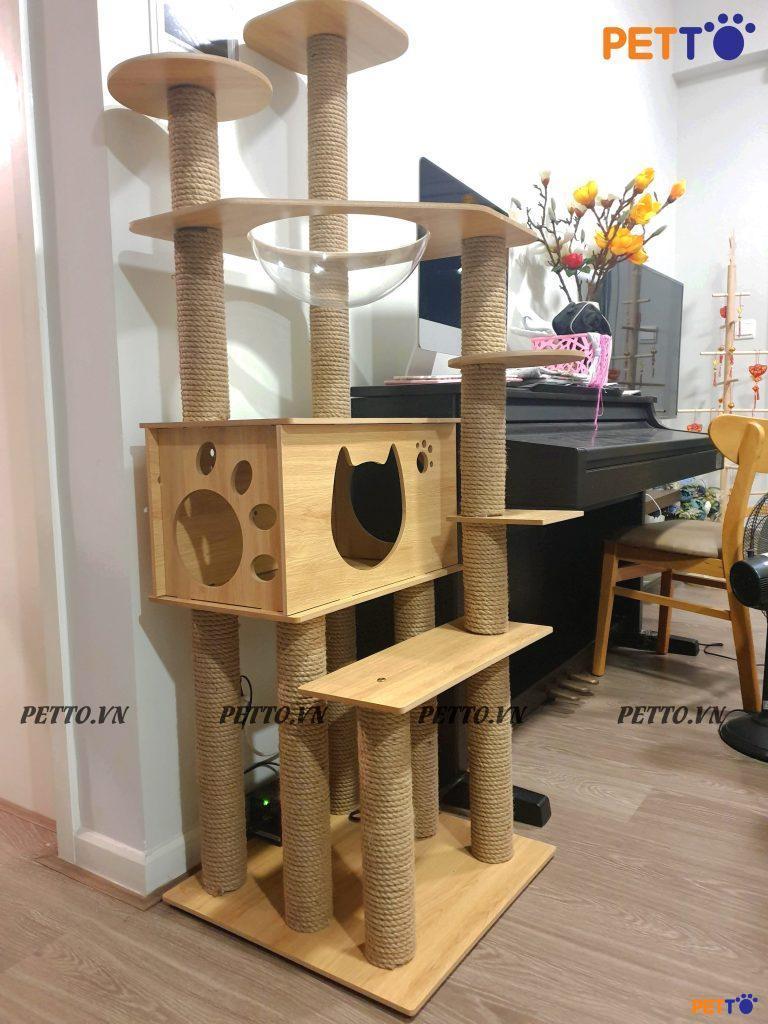 Nhà cây cho mèo giúp mèo loại bỏ móng củ